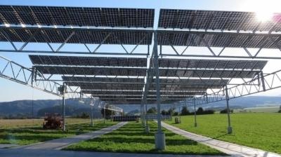 В Германии экспериментируют с выращиванием культур под солнечными панелями