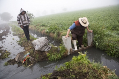 В мире необработанная вода из стоков слишком часто используется для ирригации
