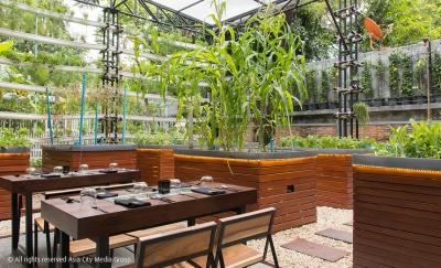 В ресторане Бангкока грядки с овощами разместили прямо в залах