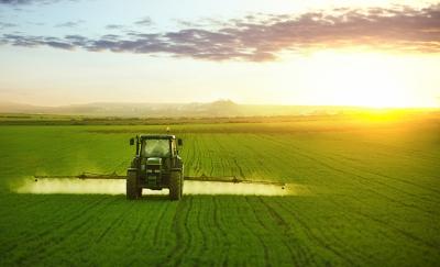 В результате международной спецоперации было выявлено 48 партий контрафактных пестицидов