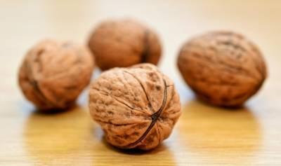В Украине благоприятные условия для выращивания грецкого ореха