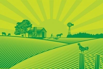 Вечернее чтиво: Грядет земельная реформа