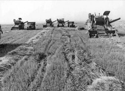 Вечернее чтиво: Как быть с аграрным рейдерством