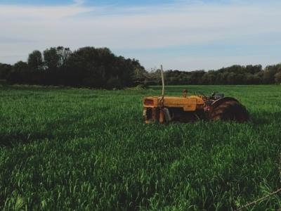 Вечернее чтиво: (Не)точное земледелие, или Как не облажаться, вкладывая в эффективность