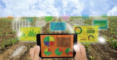 Вечернее чтиво: зачем точному земледелию нужна визуализация?
