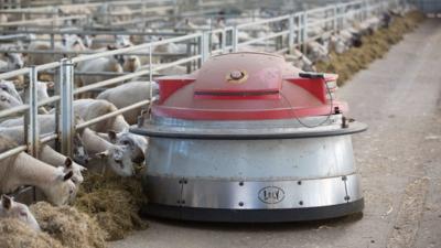 Великобритания инвестирует 90 млн фунтов в агророботов