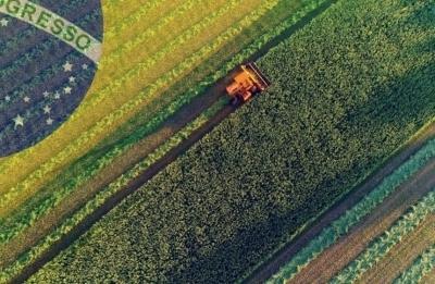 Житница планеты: 6 фактов о сельском хозяйстве Бразилии
