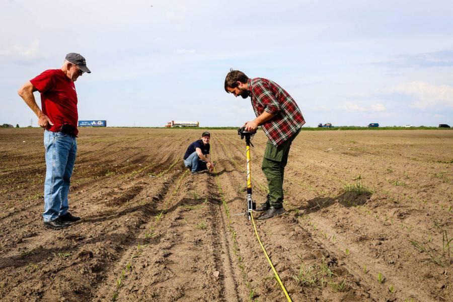 Як оцінити якість посіву? Plant Counting: Pogostick та дрони