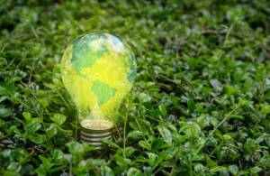 Як налагодити співпрацю між агровиробниками та agtech стартапами?