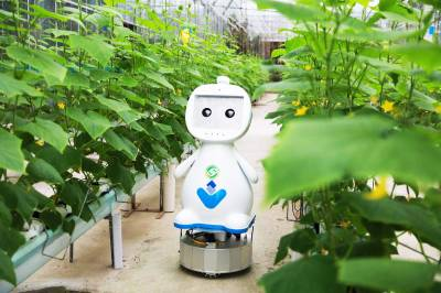 Робот з системою штучного інтелекту, що здійснює моніторинг розвитку рослин