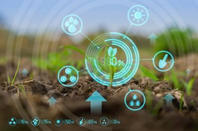 Як створити додану цінність в Agrifood?
