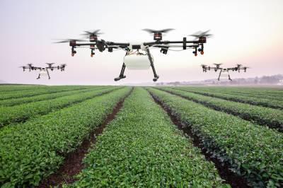 Як точне землеробство допомагає знизити витрати агровиробникам