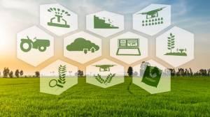 Рынок точного земледелия вырастет до $12,8 млрд к 2025 году