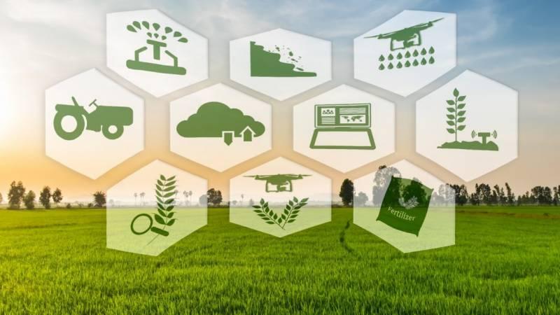 Программное обеспечение для управления фермами: 10 компаний, формирующих будущее сельского хозяйства