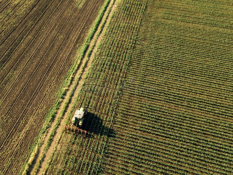 Ошибки в договорах аренды земли и риски, связанные с ними