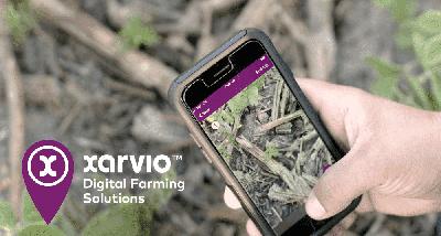 Мониторинг посевов в кармане. Тест Xarvio Field Manager