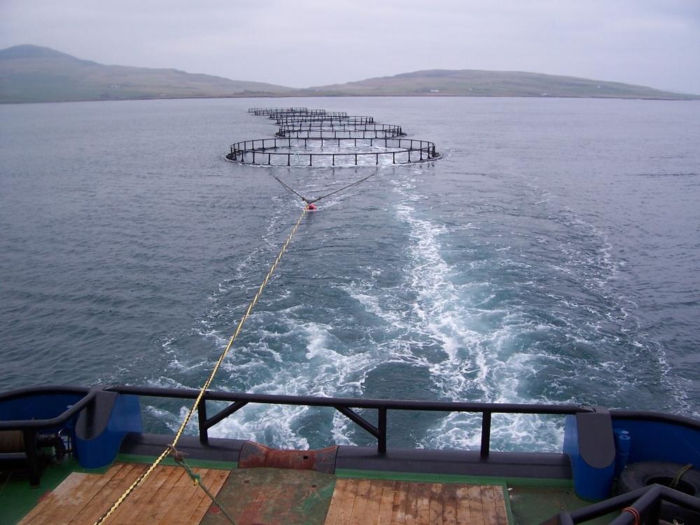 Буксировка рыбных сетей