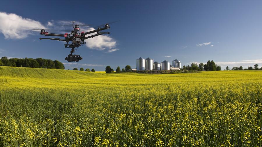Мониторинг полей с помощью дрона