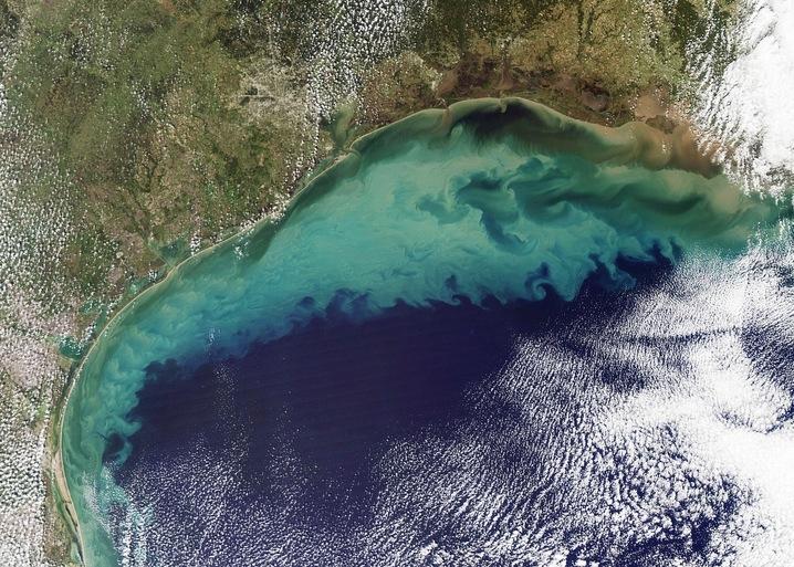 Мертвая зона в Мексиканском заливе