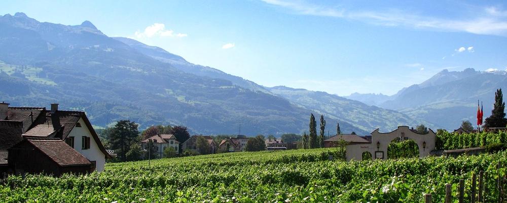 Виноградники в Вадуце