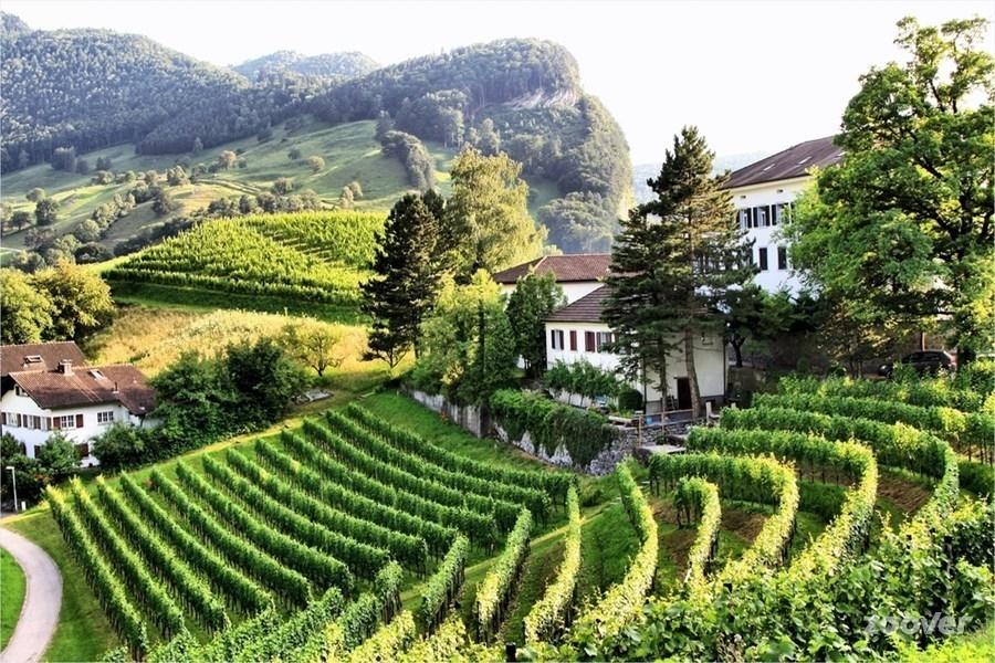 Небольшие фермерские хозяйства в Лихтенштейне