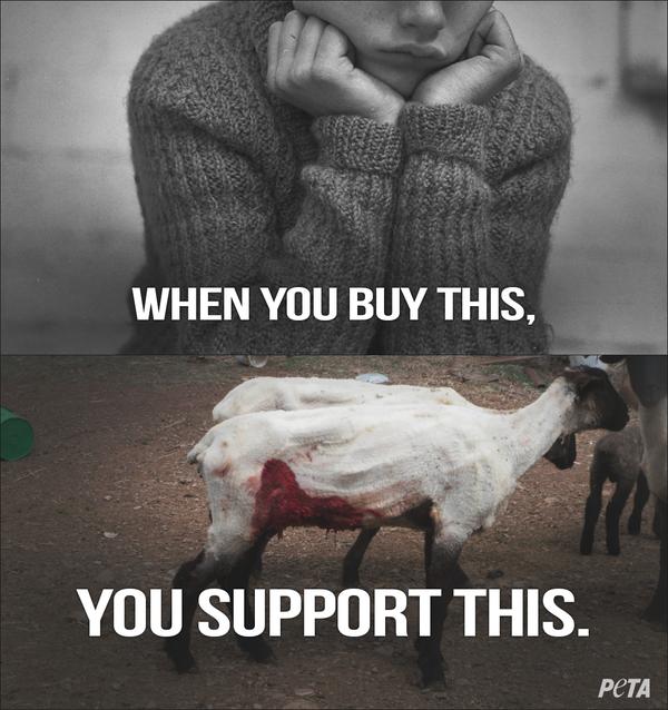 Твит Peta относительно покупки шерсти