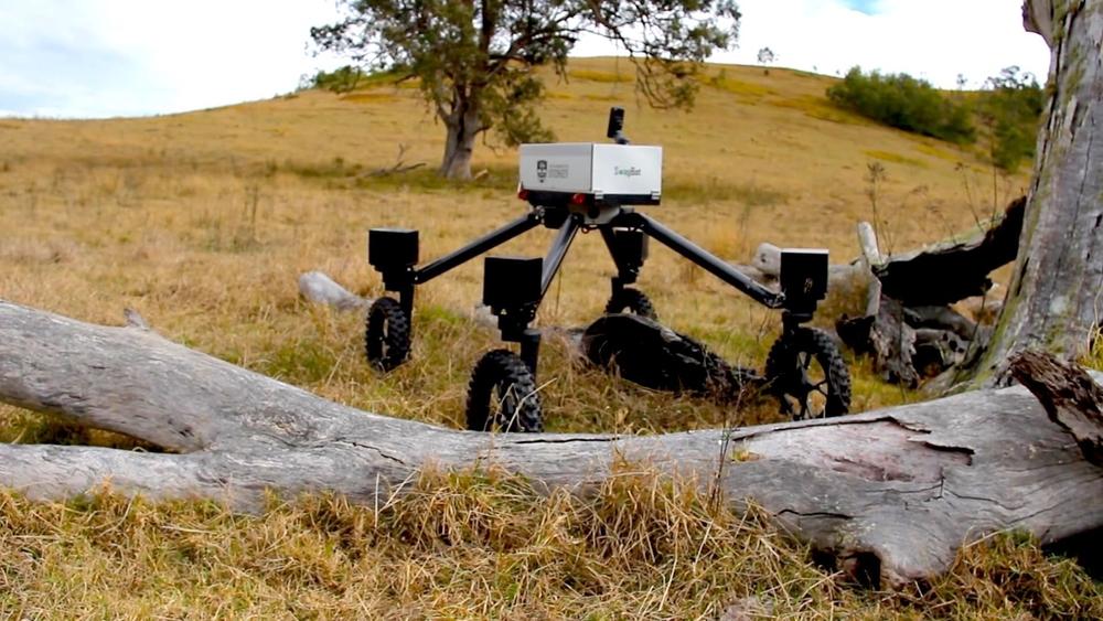 Робот-пастух
