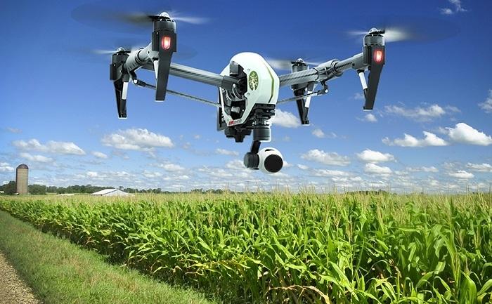 drone-field