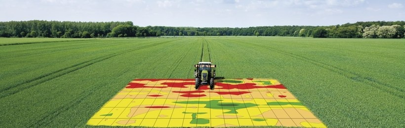 field-work