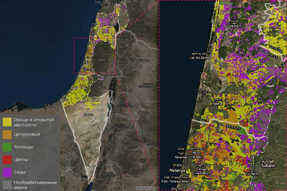 карта выращивания культур Израиль