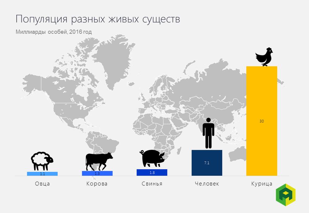 Популяция разных видов живых существ