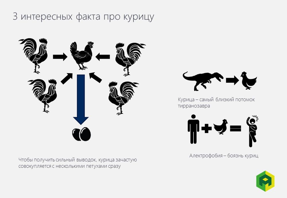 3 интересных факта про курицу