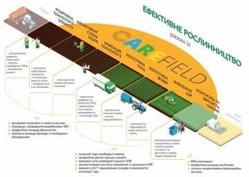 Инфографика. Растениеводство