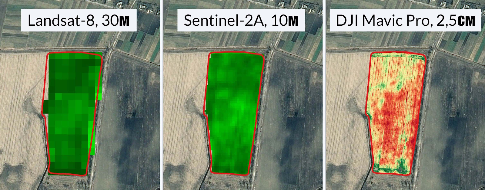 Мониторинг состояния посевов дронами — это как?