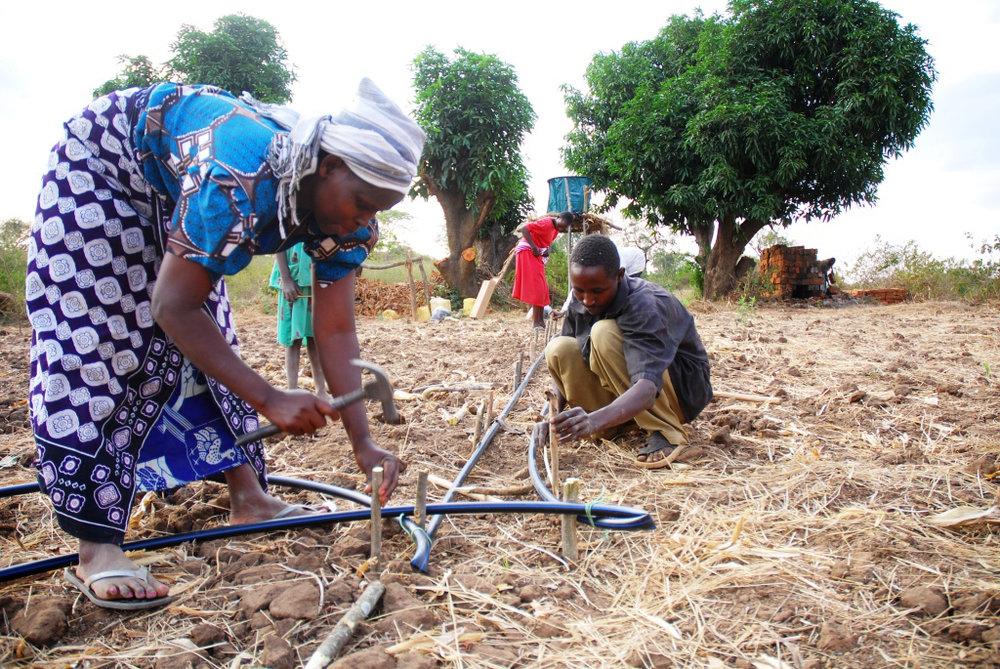 Капельное орошение в Африке